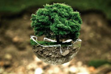 Agente medio ambiente