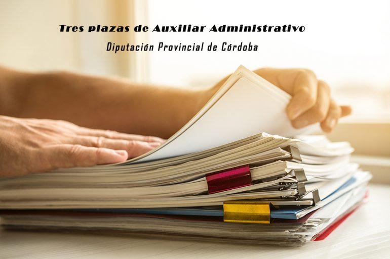Tres plazas de Auxiliar Administrativo en la Diputación de Córdoba
