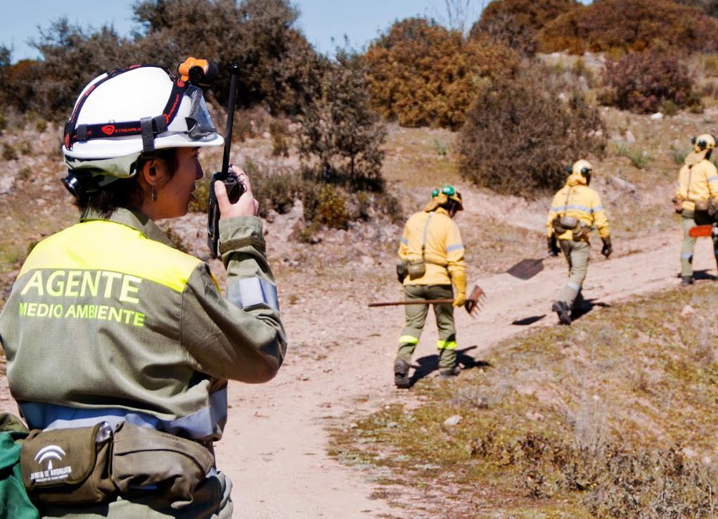 Listas provisionales Agente de Medio Ambiente de la Junta de Andalucía